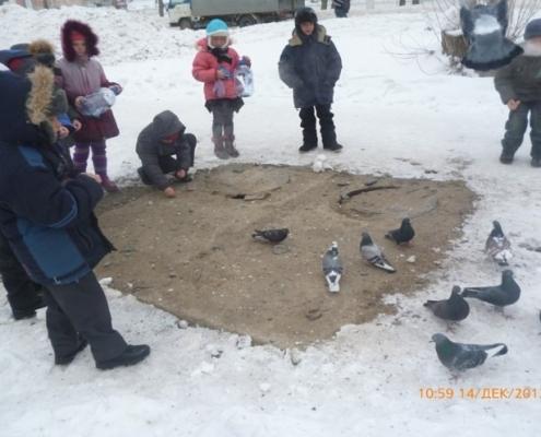 """проект - """"Зимующие птицы нашего края"""""""
