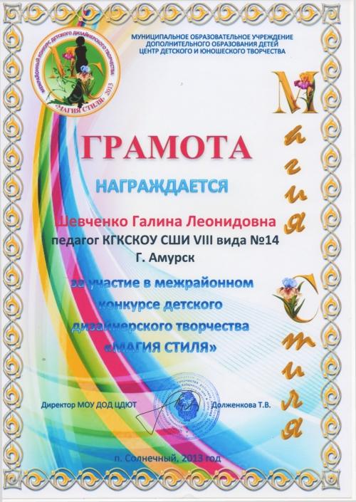 Наши достижения за 2013 год