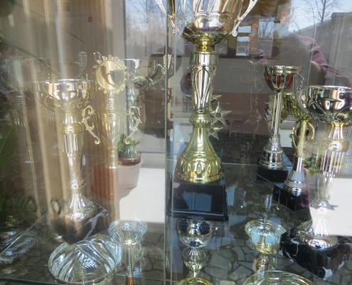 Наши многочисленные спортивные  награды
