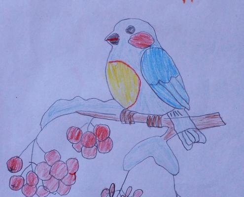 "Акция ""Покормите зимующих птиц"""