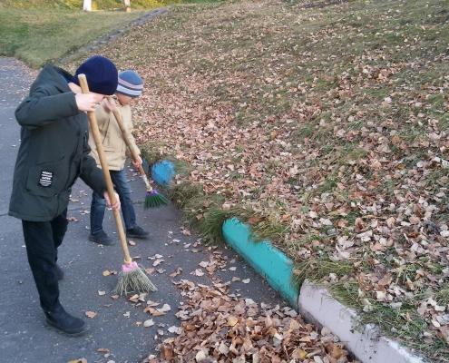 Осенние прогулки с пользой дела